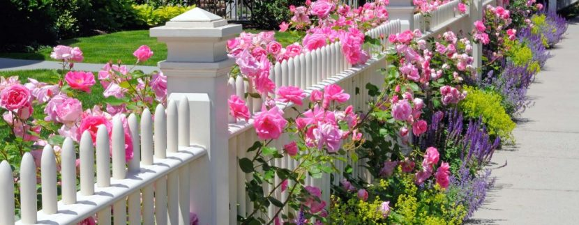 home - fence