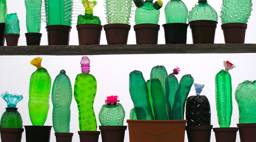 A Guide to Plastic Recycling and Reusing