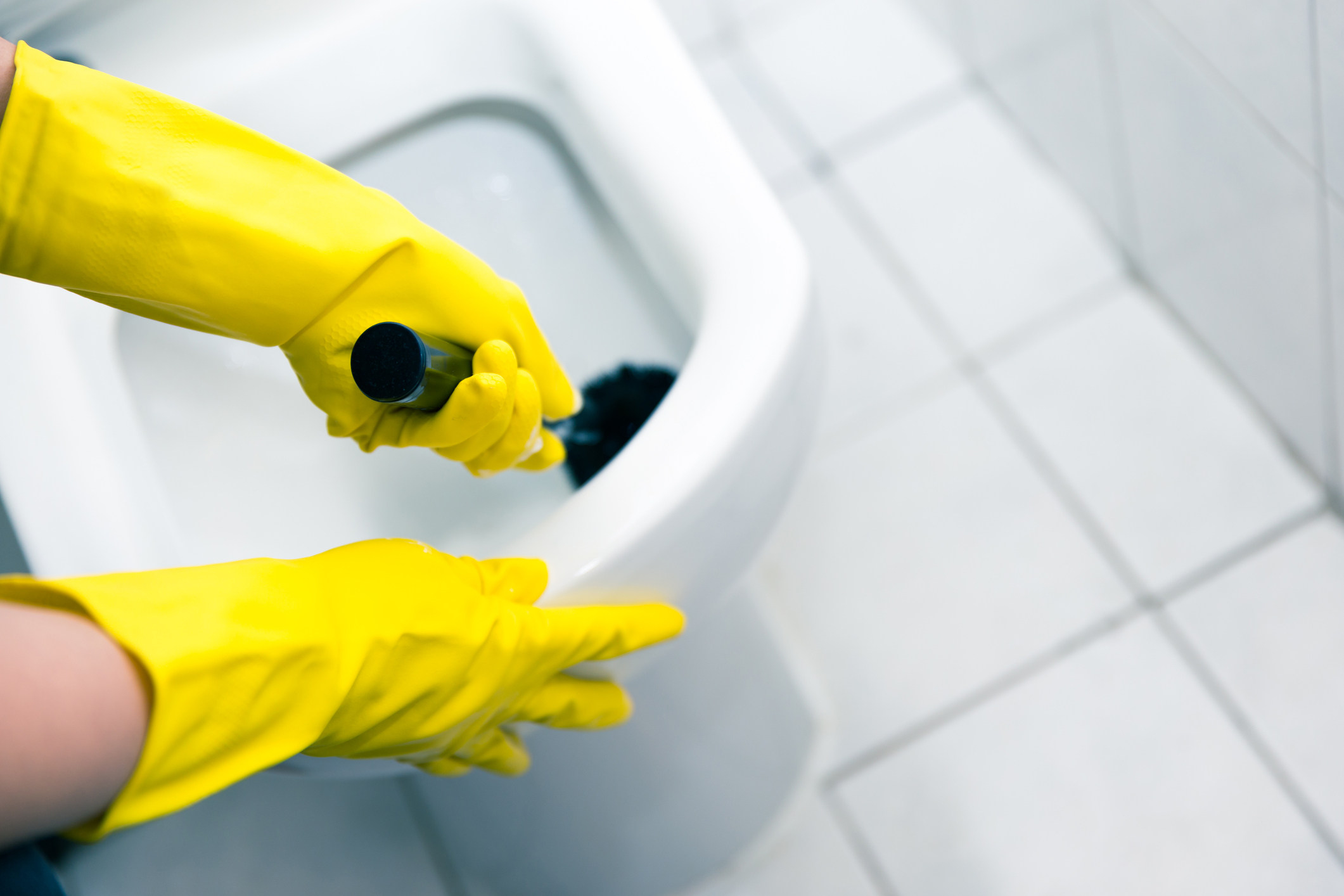 How To Clean The Toilet What Are The Best Techniques And